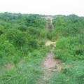Terrenos de la antigua SISALTEX, brecha canal aguas abajo